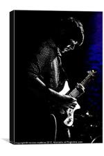 playing the blues with blue, Canvas Print