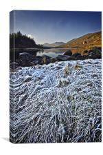 frosty morning in snowdonia, Canvas Print