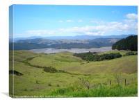 New Zealand grazing animals, Canvas Print