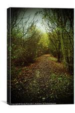 Leafy path, Canvas Print