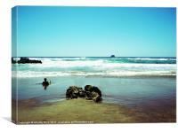 Hot water beach New Zealand, Canvas Print