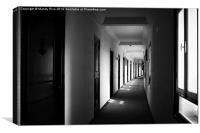 Hall of doors, Canvas Print