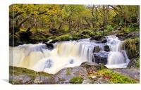 Loch Artlet Falls, Canvas Print