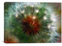 Dandelion fractalius 2, Canvas Print
