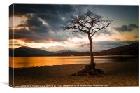 Bonny Banks Sunset, Canvas Print