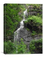 A view of Canonteign Falls, Canvas Print