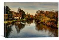 Bickleigh bridge, River Exe, Canvas Print