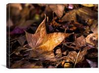 Death of Autumn, Canvas Print