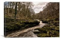The Strid Squeeze, Canvas Print