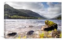 Loch Voil Moss