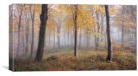 Autumnal Hooke, Canvas Print