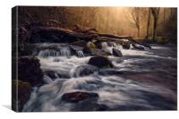 Fingle Cascades, Canvas Print