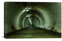 Tunnel Head, Canvas Print