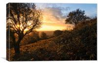 Autumn on the hill, Canvas Print