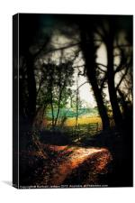 Autumn woods, Canvas Print