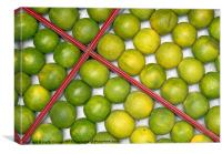 Box of Limes, Canvas Print