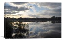 frensham pond tilford surrey, Canvas Print