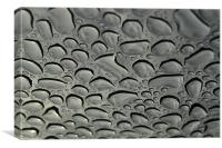 rain drops, Canvas Print