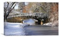 Winter at Lady's Bridge, Canvas Print