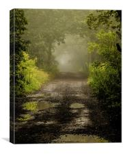 Misty Woodland Lane II, Canvas Print