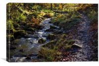 Upper Bridge, Wyming Brook, Canvas Print