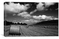 Sussex Harvest Field, Canvas Print