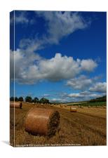 Sussex Harvest, Canvas Print
