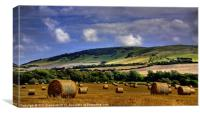 Alfriston Harvest, Canvas Print