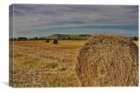 Firle Hay Bales, Canvas Print