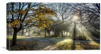 A Misty Morning, Canvas Print