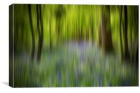 Bluebell Blur, Canvas Print