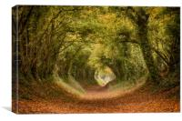 Halnaker Tree Tunnel, Canvas Print