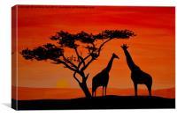 Longneck sunset, Canvas Print