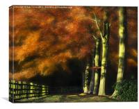 Autumn Beeches, Canvas Print
