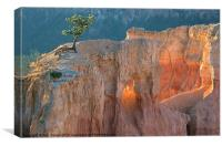 Bryce Light, Canvas Print