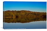Lake Reflections, Canvas Print
