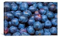 Sweet Blueberries, Canvas Print