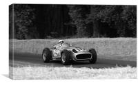 Stirling Moss and Mercedes, Canvas Print