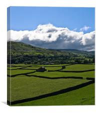 Swaledale, Canvas Print