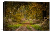 Forever Autumn, Canvas Print