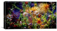 wild flower universe, Canvas Print
