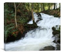 Lake District Stream in flood., Canvas Print