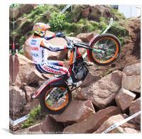 World trials championship, Canvas Print