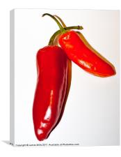 Red Hot Chillies, Canvas Print