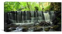 Lickleyhead Castle Weir, Canvas Print