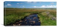 Bracky River, Canvas Print