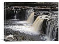 Aysgarth Falls - Slow, Canvas Print