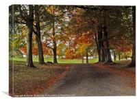 Studley Autumn, Canvas Print
