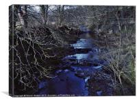 The River Nidd, Canvas Print