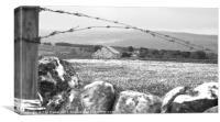 Desolate Barn, Canvas Print